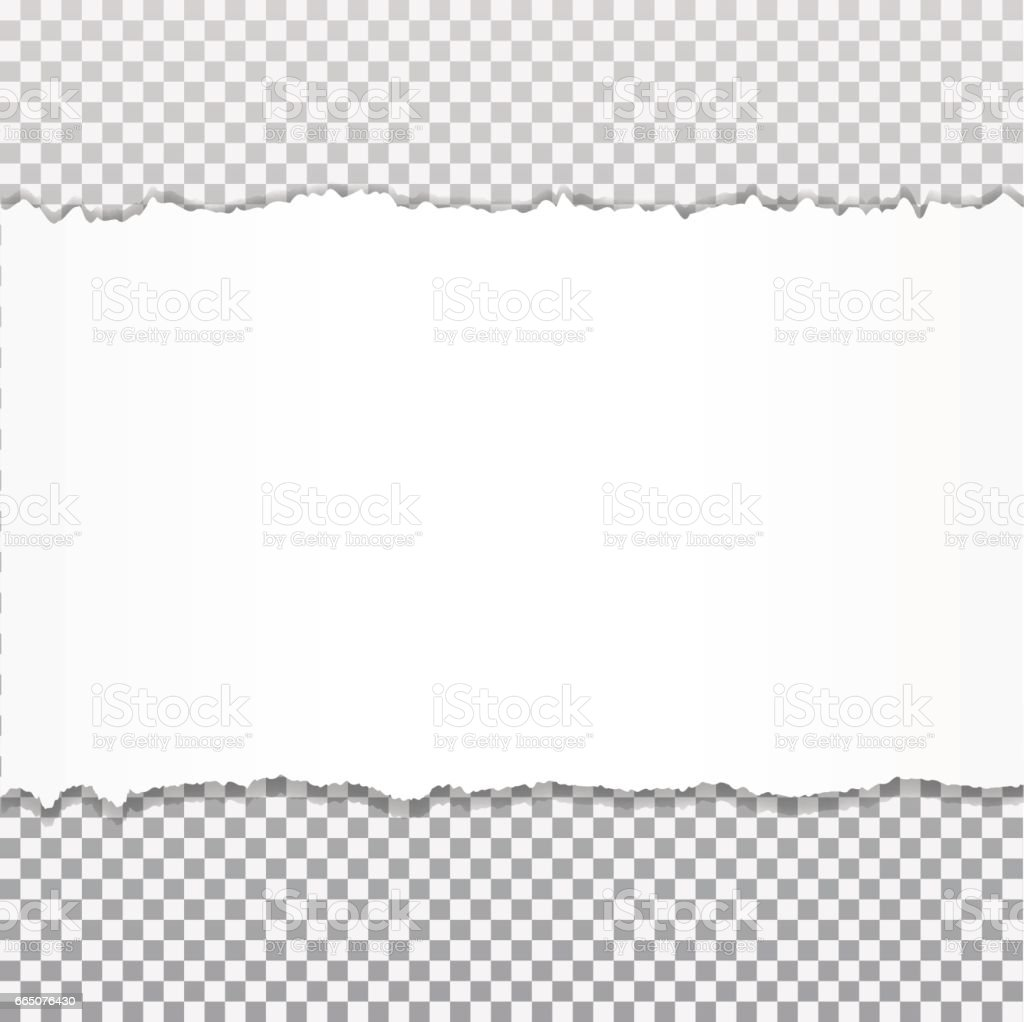 Realistic vector torn paper with ripped edges with space for your text. vector art illustration