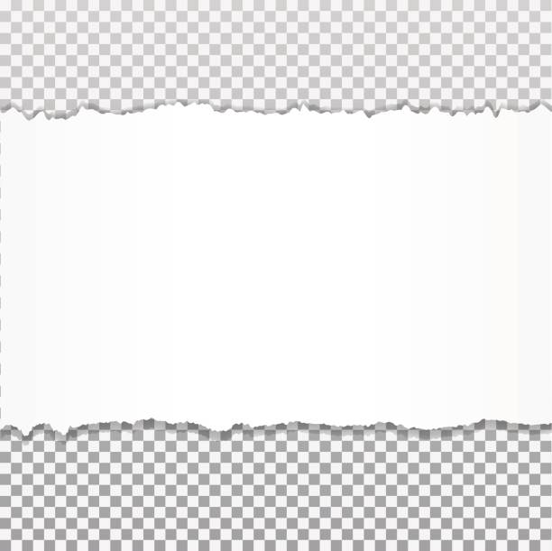 Realistic vector torn paper with ripped edges with space for your text. Realistic vector torn paper with ripped edges with space for your text. cut or torn paper stock illustrations