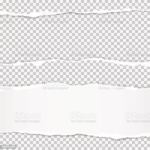 Vector Réaliste Déchiré Papier À Bords Déchirés Avec Espace Pour Votre Texte Vecteurs libres de droits et plus d'images vectorielles de Abstrait