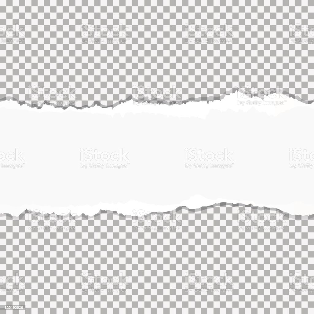 Realistic vector torn paper with ripped edges with space for your text, seamless horizontally. vector art illustration