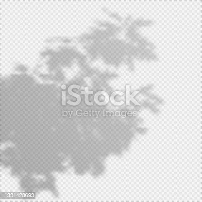 istock Realistic Vector transparent overlay blured shadow of branch leaves. 1331428693