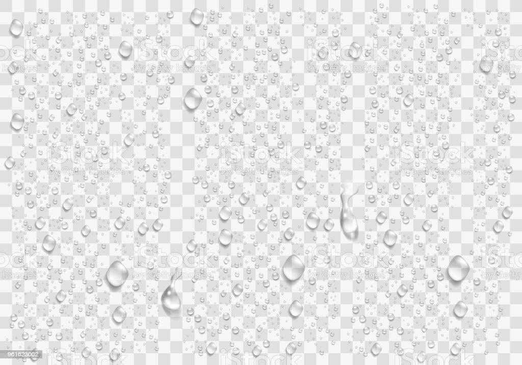 Gotículas de água realista na janela transparente. Vector - ilustração de arte em vetor