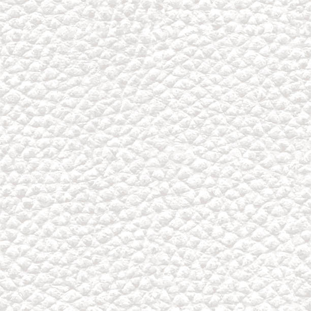 ilustraciones, imágenes clip art, dibujos animados e iconos de stock de realista de cuero blanca textura de fondo sin costuras-ilustración - textura de pieles