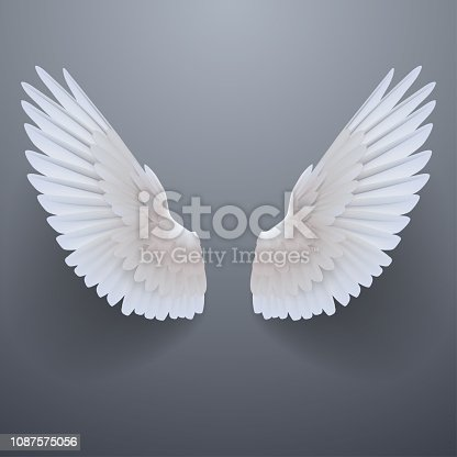 istock Realistic white wings 1087575056