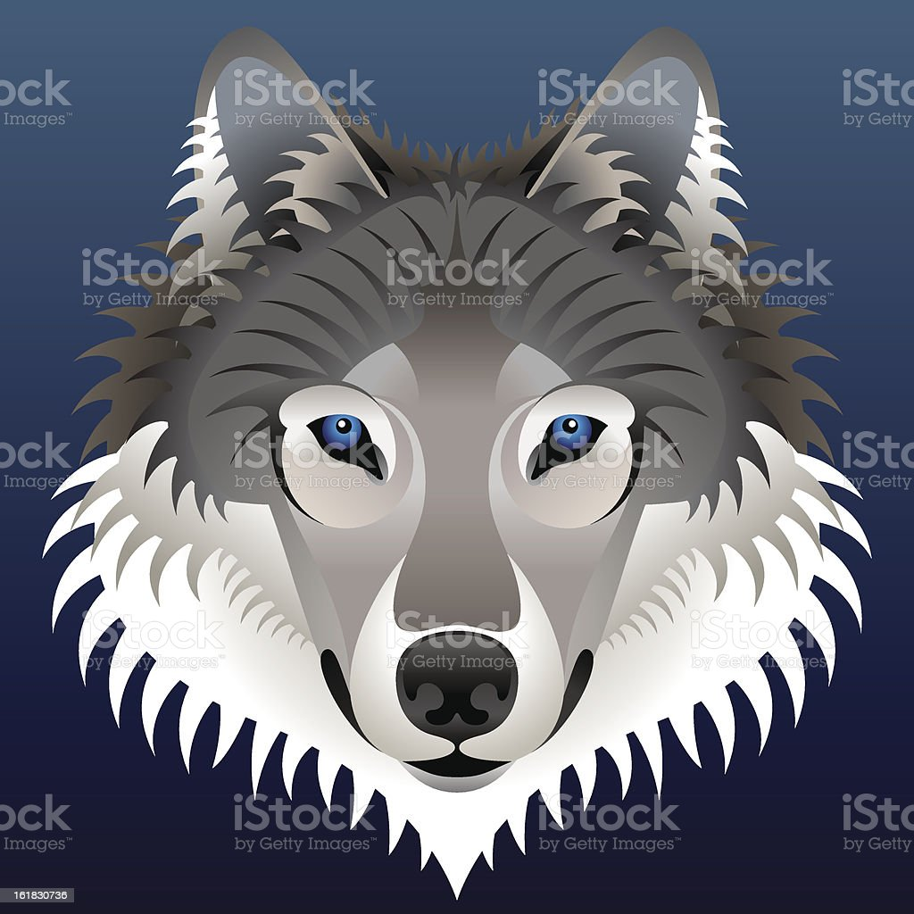 Realistic wolf's face royalty-free stock vector art