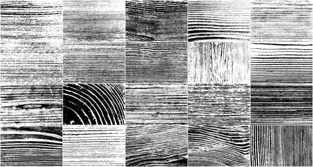illustrazioni stock, clip art, cartoni animati e icone di tendenza di realistic wooden texture - wood