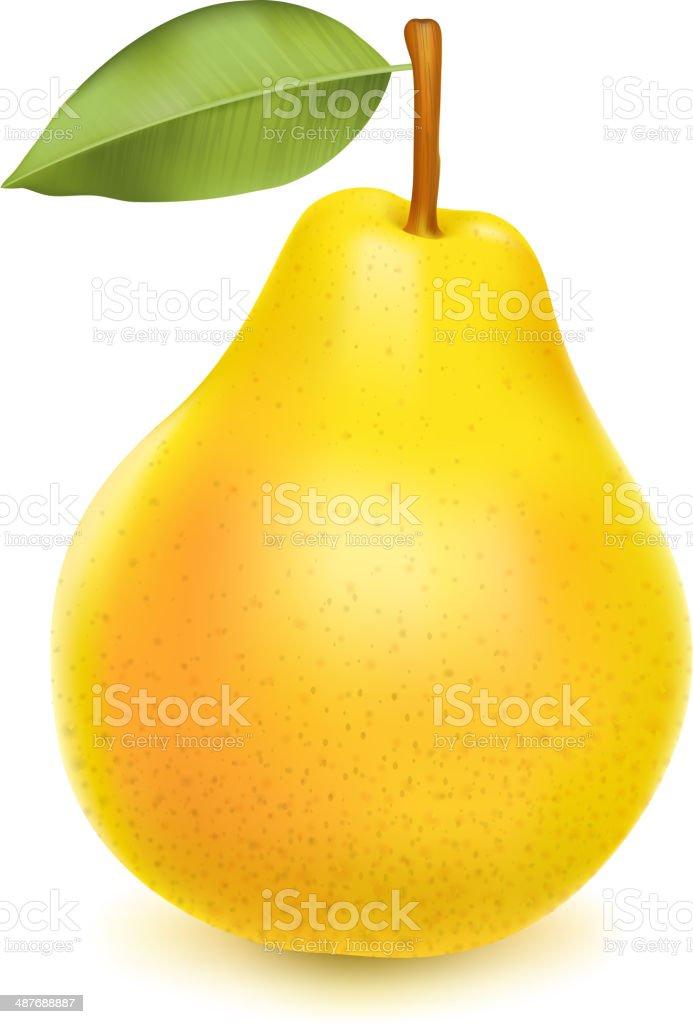 Realistische yellow pear – Vektorgrafik