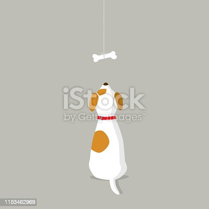 istock Rear view of dog looking at dog bone 1153462969