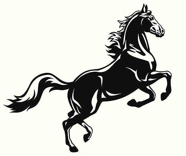 rearing horse black white - clip art of a black and white barn stock illustrations, clip art, cartoons, & icons