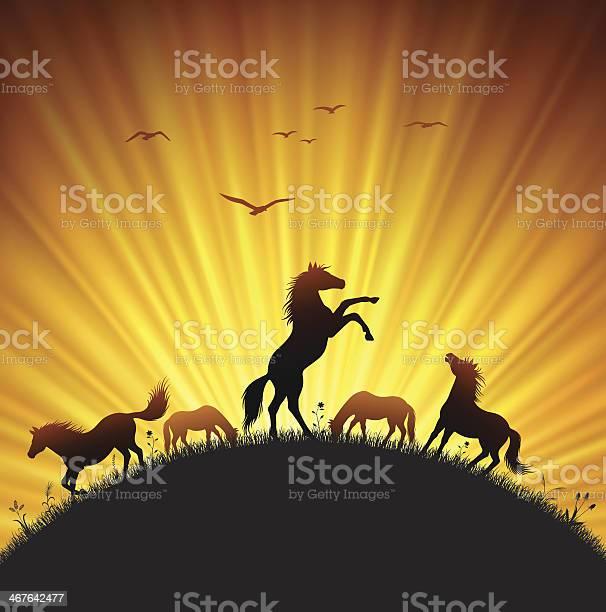 Rearing horse in field vector id467642477?b=1&k=6&m=467642477&s=612x612&h=k2fkhhidw4p 9wmvzvfdkzcnvfa7twsssi0jetnomce=