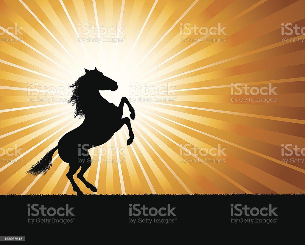 Rearing Stallion Background - Horse vector art illustration