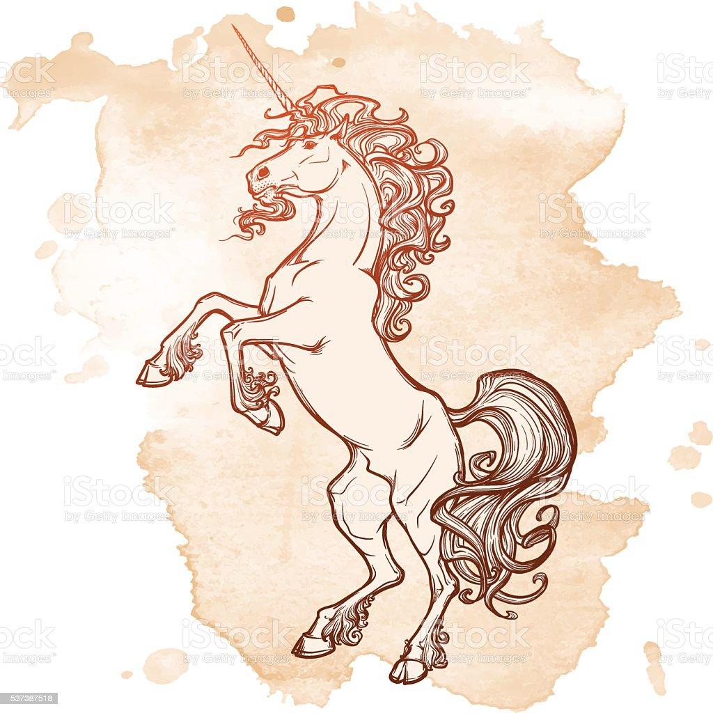 Unicorno Su Sfondo Bianco Allevamento Immagini Vettoriali Stock E