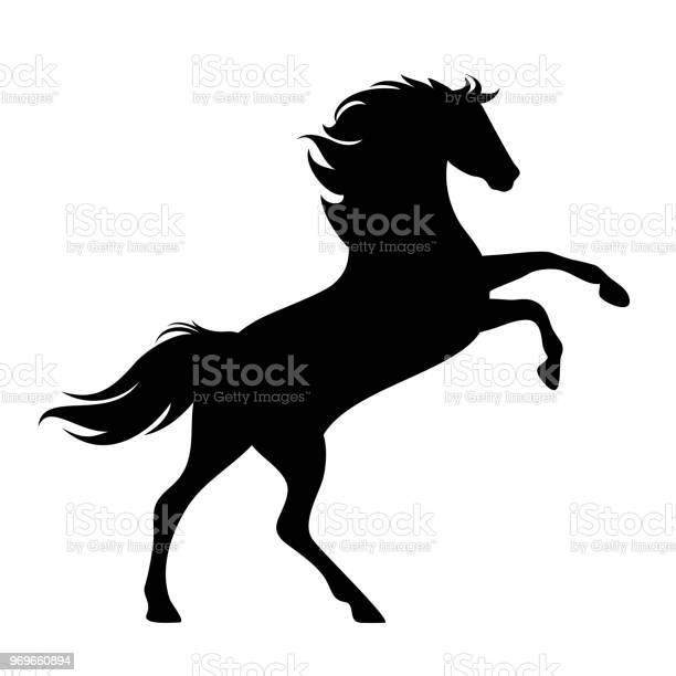 Rearing up horse black vector silhouette vector id969660894?b=1&k=6&m=969660894&s=612x612&h=om78 uikx6ghwi2reoa egyrkdyv9vtfek o42jfuby=