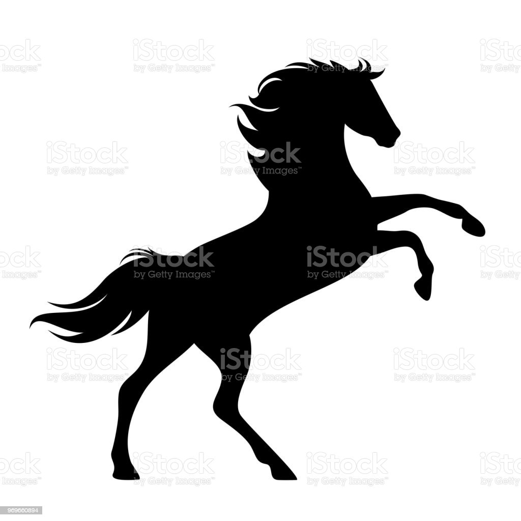 rearing up horse black vector silhouette vector art illustration