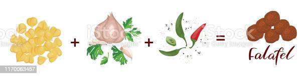 Recipe falafel chickpea onion garlic parsley chilli pepper cumin vector id1170063457?b=1&k=6&m=1170063457&s=612x612&h=unl8vf xwd mnhrxxs6pyqcssyqjtaf3jt1lozt 2i8=