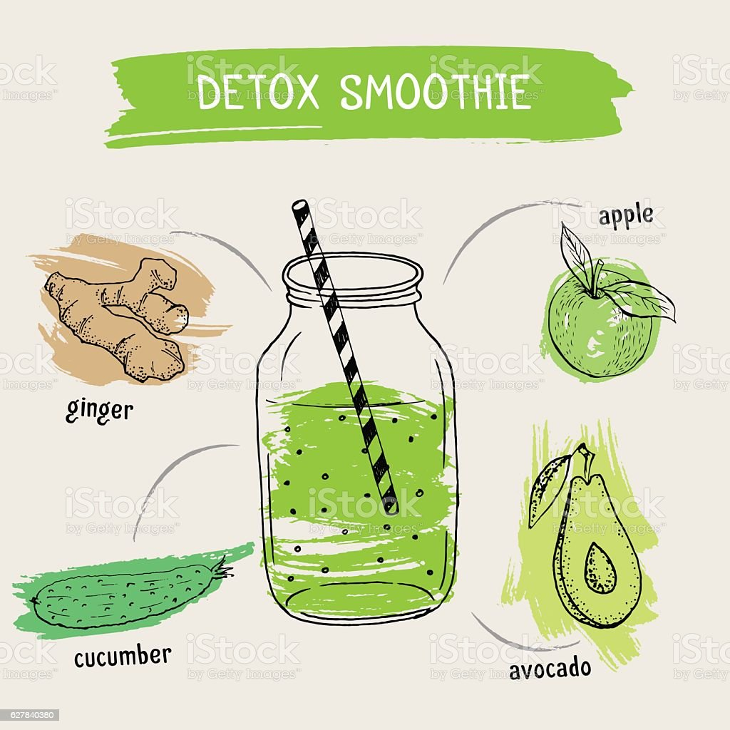 Recipe of smoothie with fruit and vegetable. Vector illustration vector art illustration