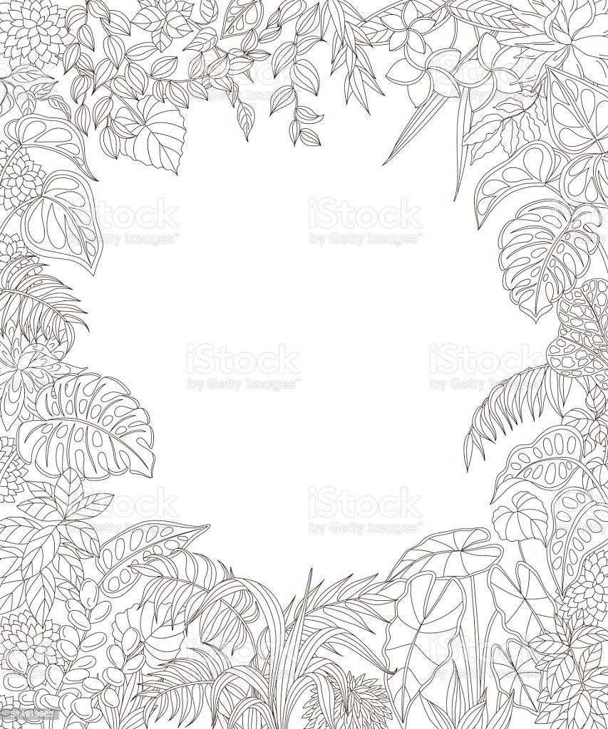 Monture rectangulaire avec plantes tropicales. - Illustration vectorielle