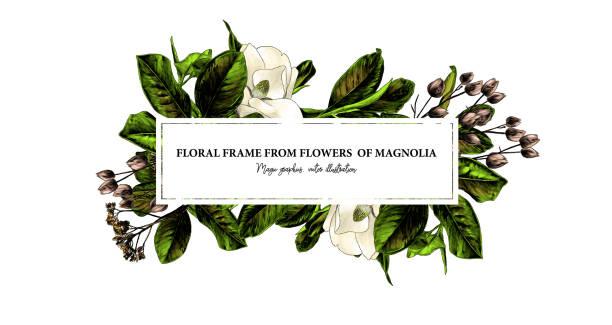 rectangular elongated frame decorated with Magnolia flowers and leaves – artystyczna grafika wektorowa