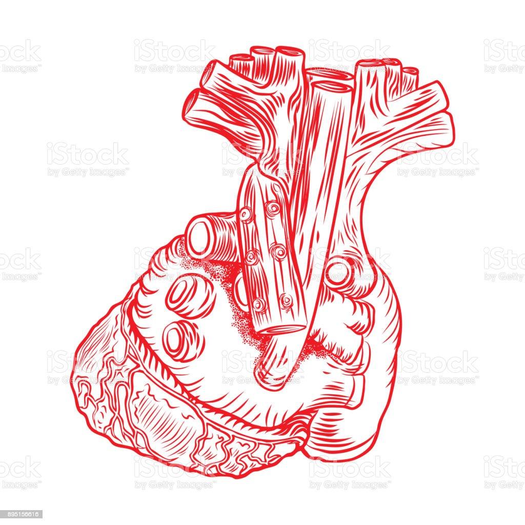 Ilustración de Concepto De Cartel Rojo Corazón Humano Anatomía ...