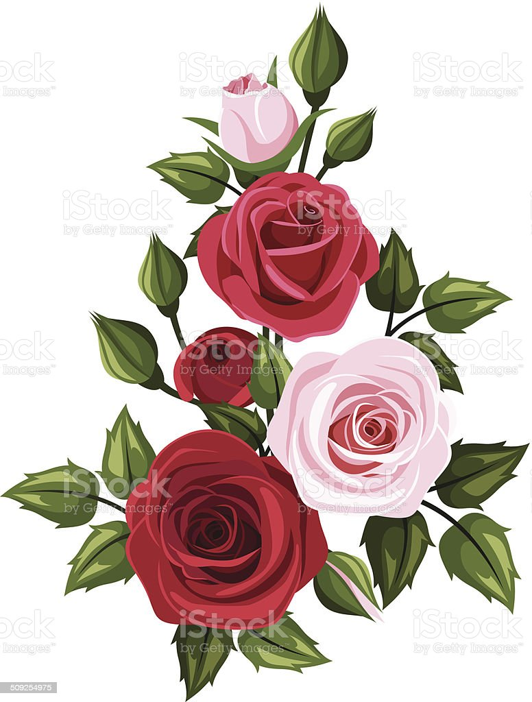Red And Pink Roses Vector Illustration Stock Vector Art More