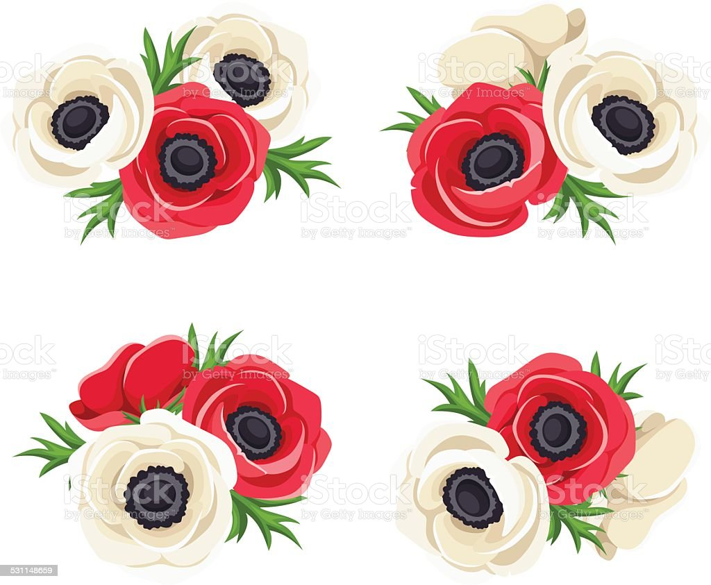 Red And White Anemone Flowers Vector Illustration Stock Vector Art