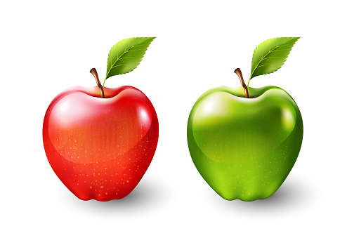 Red apple and green apple, fruit isolated, Vector illustration