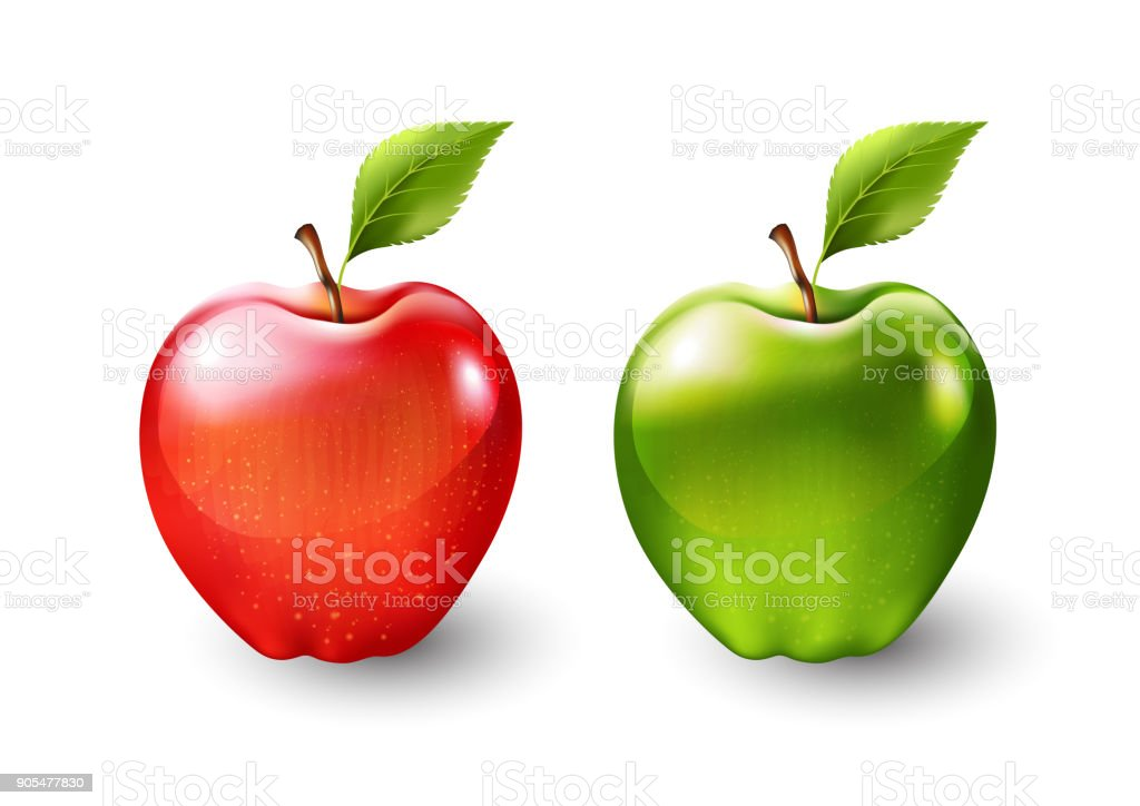 Red apple and green apple, fruit isolated, Vector illustration vector art illustration