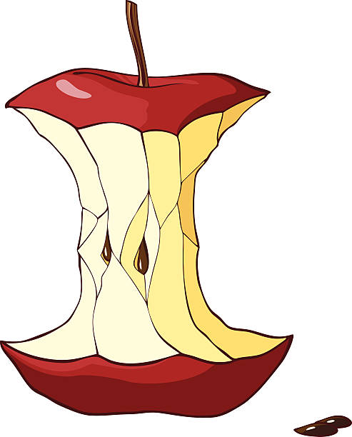 food scraps clip art vector images  illustrations  istock