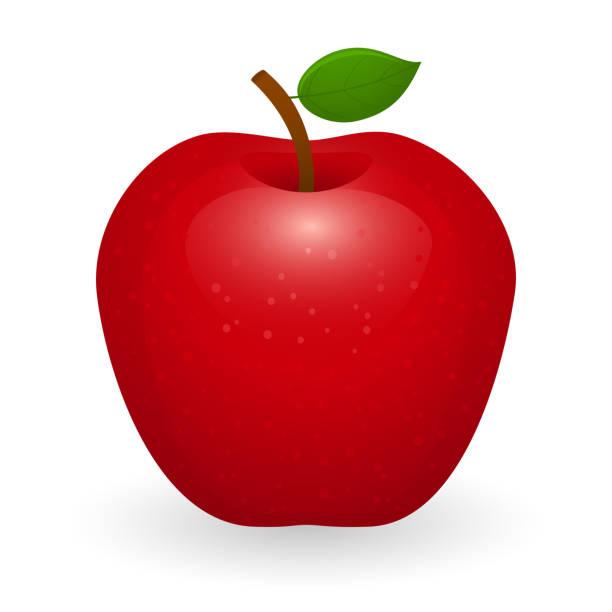 illustrazioni stock, clip art, cartoni animati e icone di tendenza di red apple isolated - mela