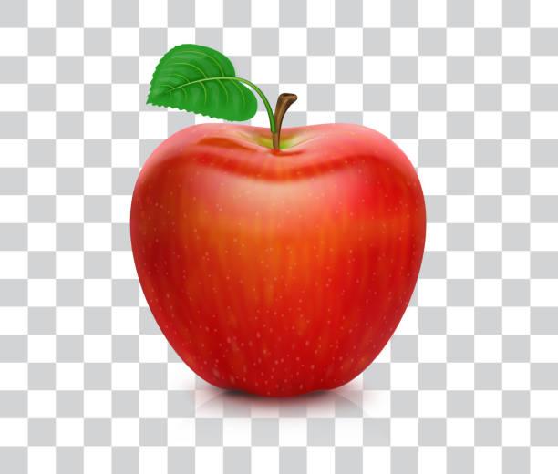illustrazioni stock, clip art, cartoni animati e icone di tendenza di mela rossa - mela