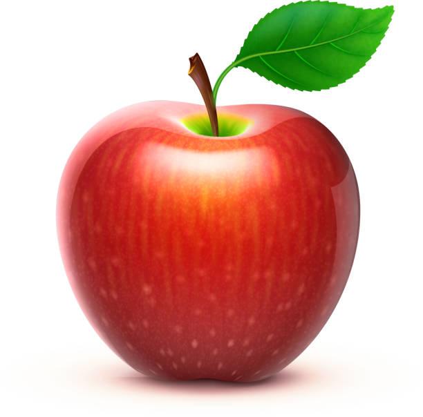 Manzana red - ilustración de arte vectorial