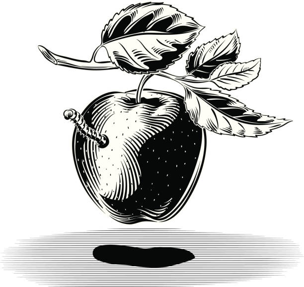 red apple with worm - rotten apple stock illustrations, clip art, cartoons, & icons