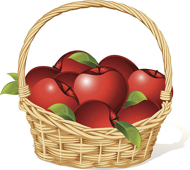 royalty free basket of apples clip art vector images