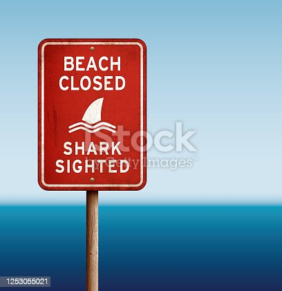 istock Red 'beach closed_shark' warning sign with sea 1253055021
