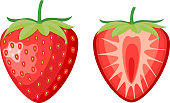 red berry strawberry and a half of strawberry isolated on white background. Vector illustration in flat style