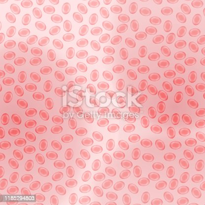 Red blood cells under microscope