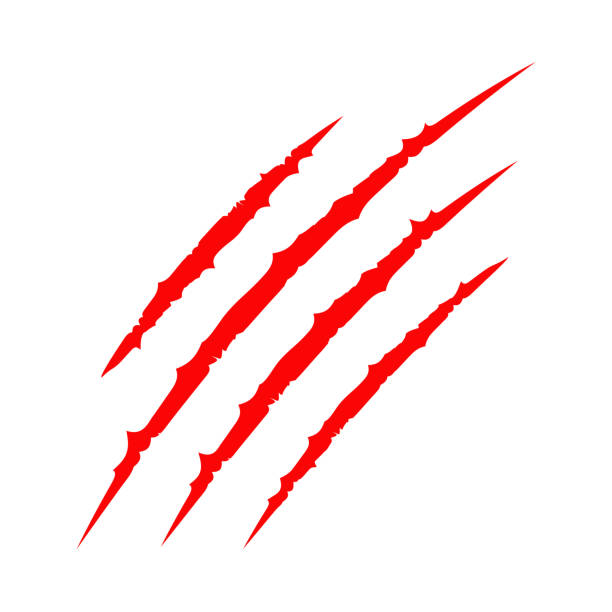 illustrazioni stock, clip art, cartoni animati e icone di tendenza di red bloody claws animal scratch scrape track. cat tiger scratches paw. four nails trace. funny design element. flat design. white background. isolated. - thriller