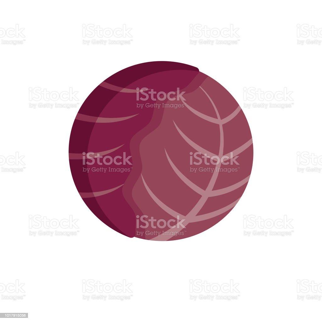Red Cabbage Flat Design Vegetable Icon vector art illustration