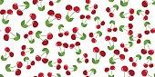cherries seamless on white background. vector illustration