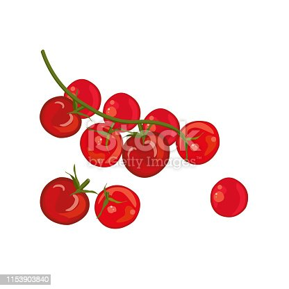 Red cherry tomatoes, raw vegetables. Whole and sliced. Vector illustration.