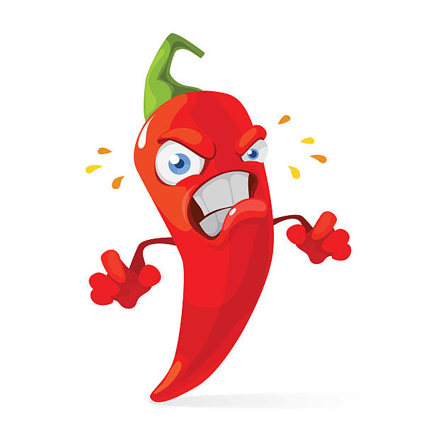 Red chilli pepper angry character Vector cartoon illustration of a red pepper mascot angry and burning mexican restaurant stock illustrations