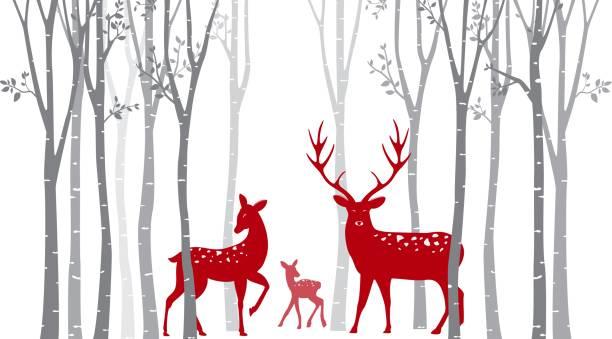 weihnachten-rothirsch mit birke - hirsch stock-grafiken, -clipart, -cartoons und -symbole