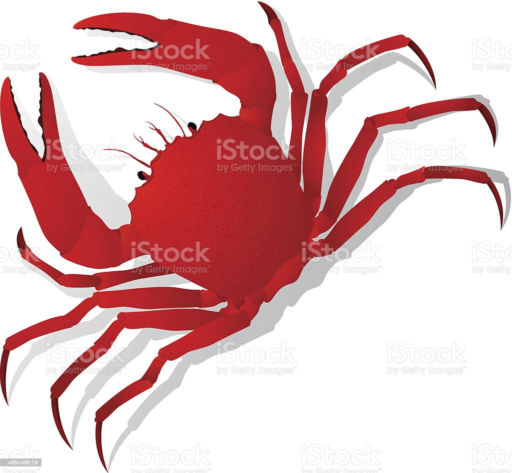 Red crab vector royalty-free stock vector art