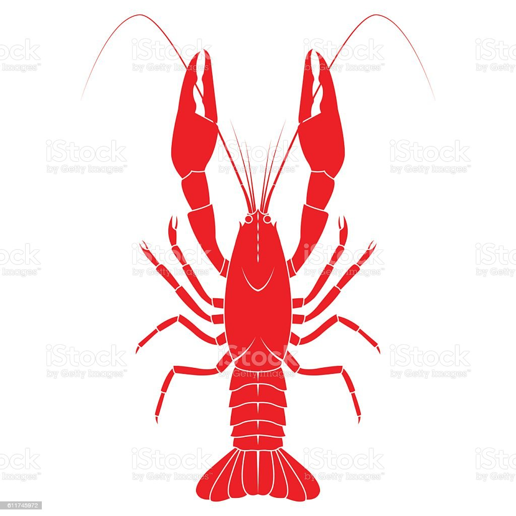 royalty free crawfish clip art vector images illustrations istock rh istockphoto com crawfish clip art images crayfish clip art