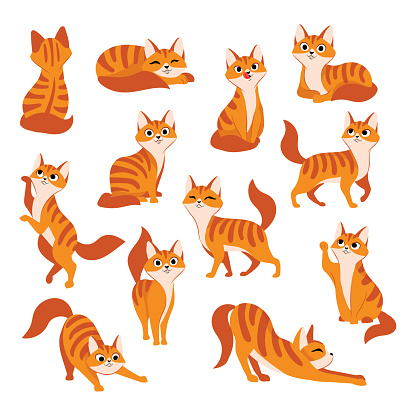 Red cute cat in different poses. Vector cartoon flat illustration. Funny playful kitty isolated on white background