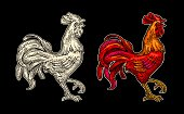 Red fiery rooster. Vintage color drawn vector engraving illustration for poster. Isolated on dark background