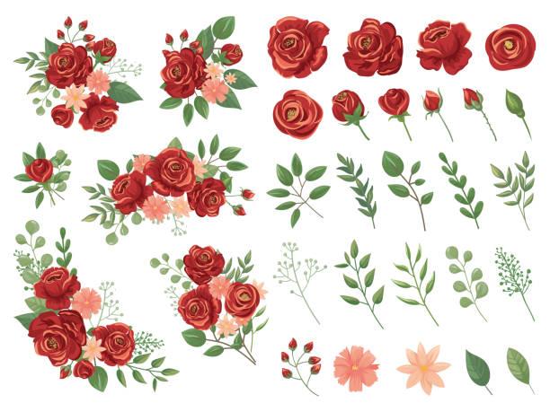 Rose Vector Art Graphics Freevector Com