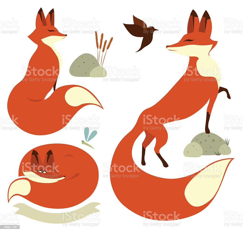 Red Foxes royalty-free stock vector art