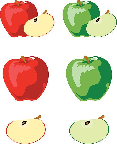 red & grünen Äpfeln – Vektorgrafik