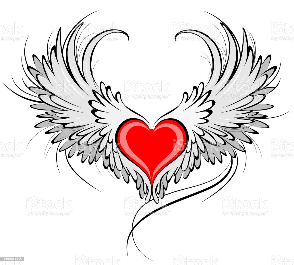 red heart of an angel vector art illustration